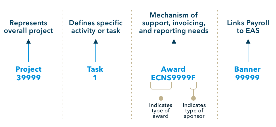 Components of a Project/Task/Award Number